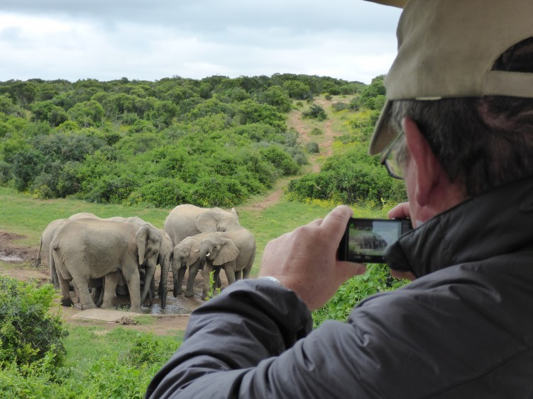 Spotting elephants at Addo