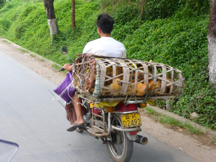 Meals on wheels!
