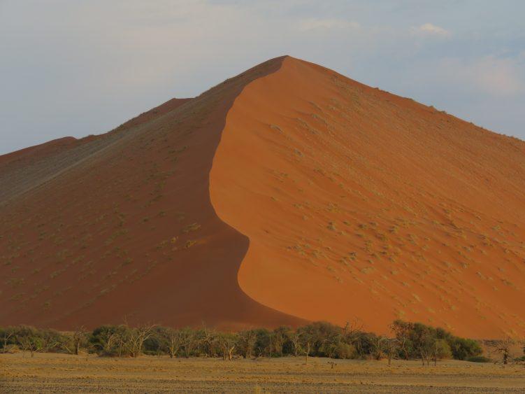 Famous Dune 45